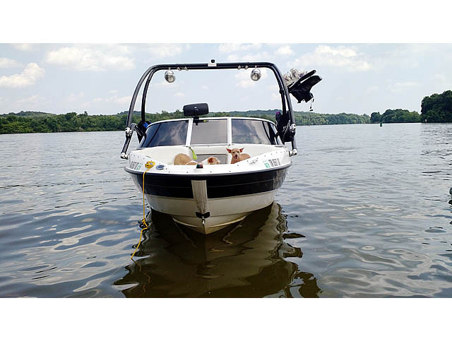 2009 Bayliner BR185 wakeboard tower, speakers, racks, bimini & lights