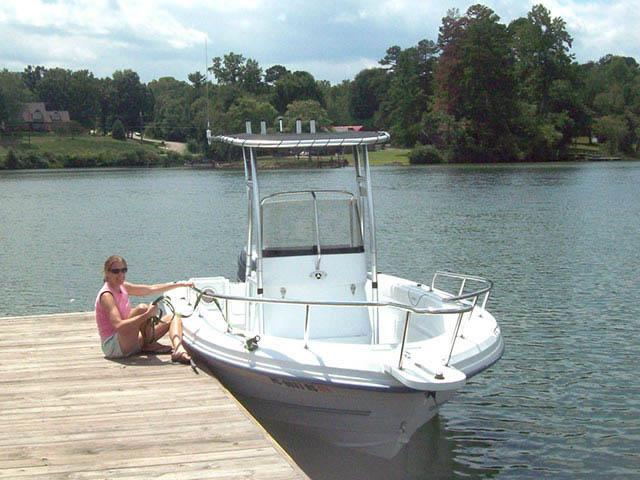 T-Top for 2006 Triumph 195CC center console boats 34501-3